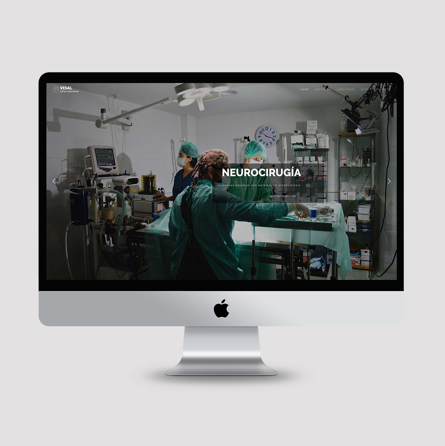 Diseño web responsive clínica veterinaria