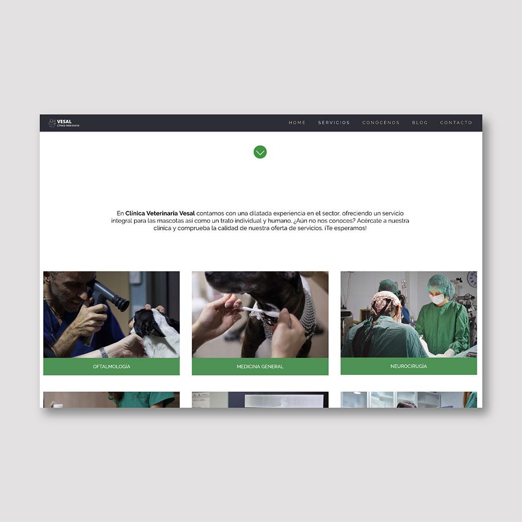 pagina-web-diseño