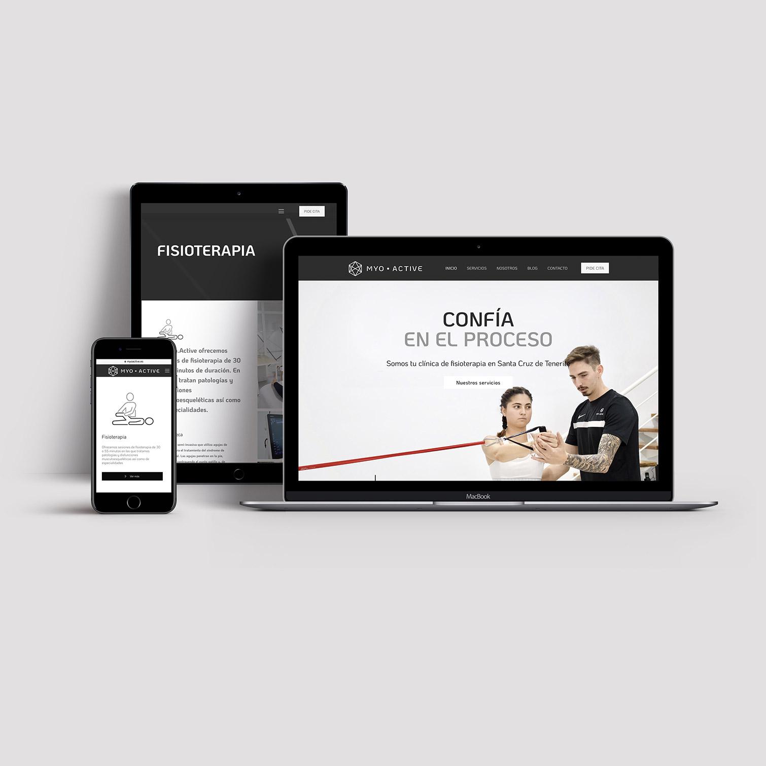 web-clinica-fisioterapia